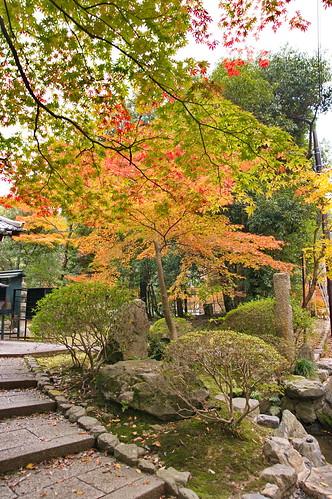 【写真】2012 紅葉 : 醍醐寺/2020-08-07/IMGP6848