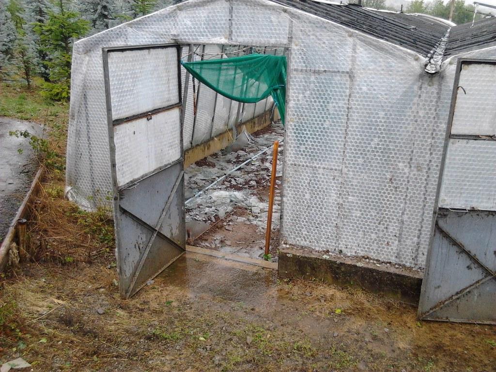 Sturmschäden Gärtnerei