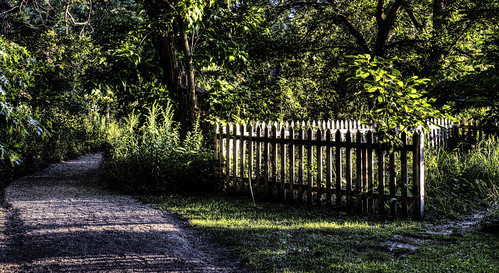 nature thegrove fences paths hdr hff nikkor18300mm fencefriday