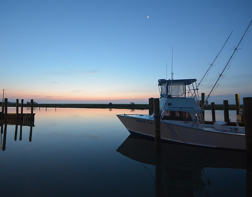 marina virginia boat fishing easternshore explore foxylady explored wachapreague