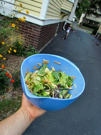 Salad Chaser