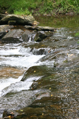 summer fall nature water rock creek movement rocks falls splash rivlets