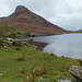 Small photo of Wales