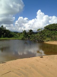 Coastal Land Acquisition
