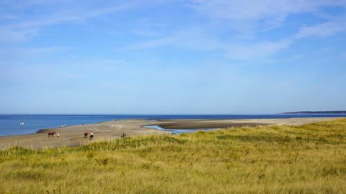 sky beach landscape newengland bluesky oceanview atlanticocean ipswich cranebeach craneestate