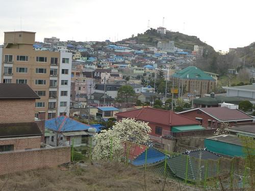 Co-Mokpo (140)