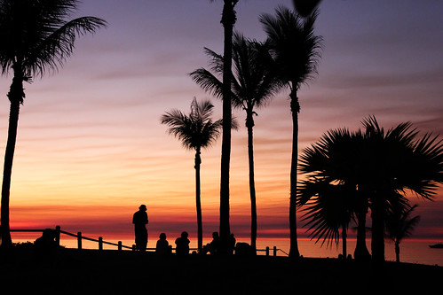 sunset silhouette sunrise relax evening australia palmtrees westernaustralia broome allieca