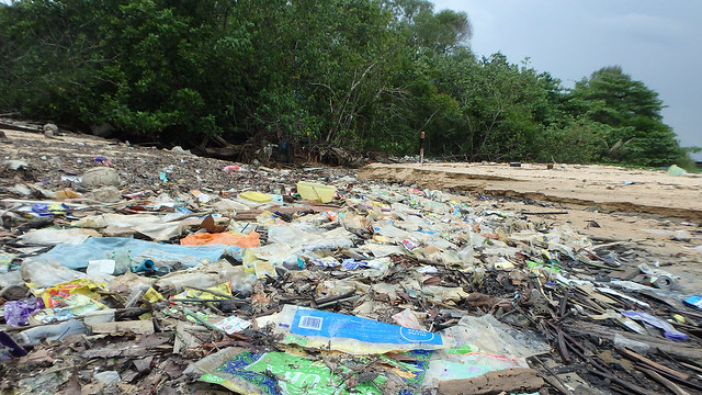 Trash just outside Pasir Ris Park boundary