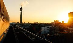 BT Sunset