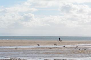 Image of Three Cliffs Sandy beach. 116picturesin2016 hustlebustle gower threecliffsbay
