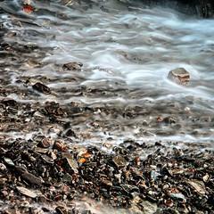 Gueirua #marea #agua #piedring #alpha7m2 #aprendiendo #Asturias #detalles @liebanafot @marquesdelagua @miryf @nunuriacas #ymuchosmas