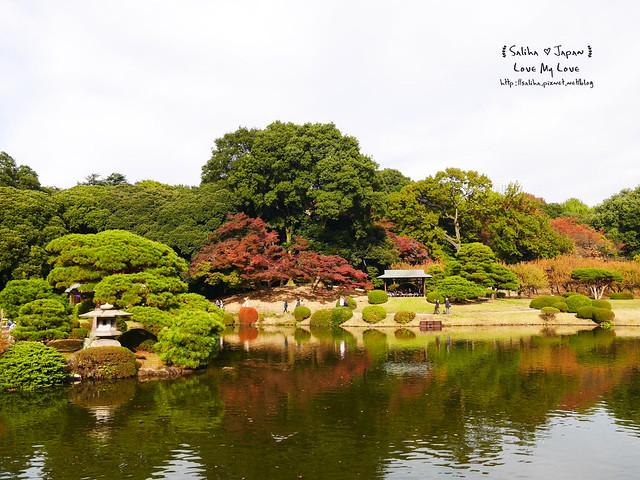 日本東京自由行新宿御苑庭園景點 (20)