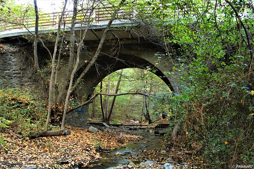 El Puente y el Arroyo