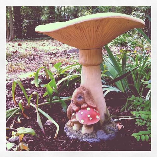 Mushroom bird bath.