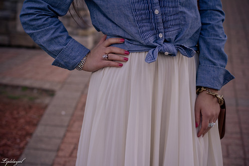 pleats and chambray-3.jpg