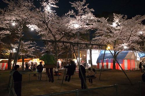 高田・夜桜