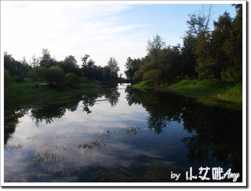 台東黑森林琵琶湖P7242409