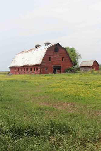 Stovall Farms is the oldest farm in Coahoma County, Mississippi, and it still owned and operated by the same family.