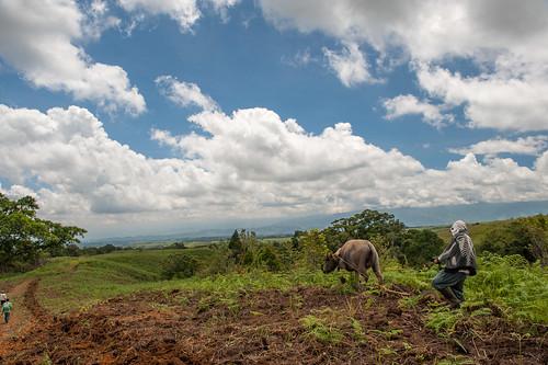landscape philippines bukidnon