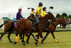 stick and ball games(0.0), eventing(0.0), stick and ball sports(0.0), polo(0.0), endurance riding(0.0), ball game(0.0), animal sports(1.0), equestrianism(1.0), equestrian sport(1.0), sports(1.0), team sport(1.0), jockey(1.0),