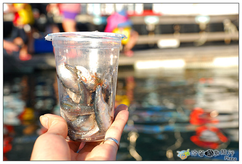 2013元貝休閒漁業_98