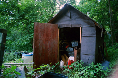 Shed
