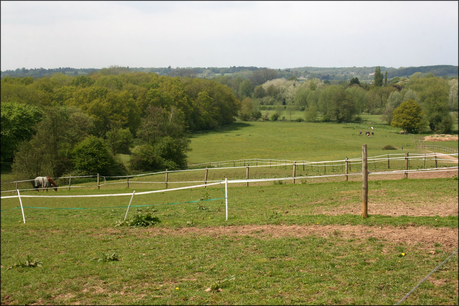 View near Padworth