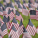 A sea of flags by CSUF Photos