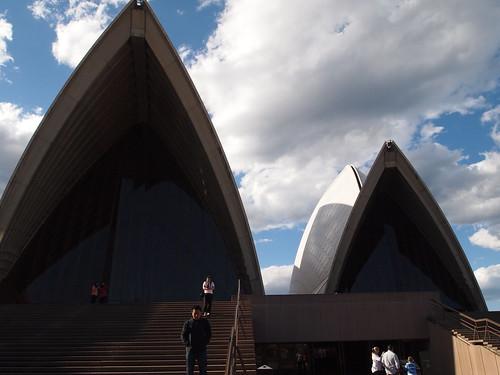 Sydney Opera House(シドニー・オペラハウス) P9126346