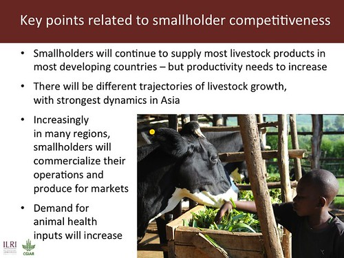 Slide 8: Key points related to smallholder competitiveness