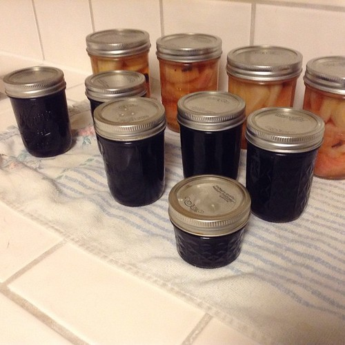 Once the canner is heated up, you might as well slip in a quick, easy jelly recipe. Here is Red Wine Jelly (Shiraz)--5.5 cups.