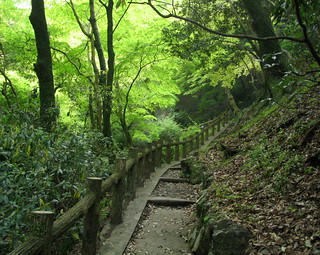Path up a Mt Minoh hillside, Meiji no Mori Minō Park