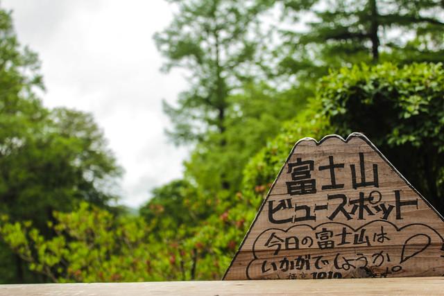 2014-06-08_00207_瑞牆山.jpg
