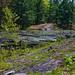 Queen Elizabeth II Wildlands Provincial Park