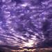 Sea of Sunrise Clouds