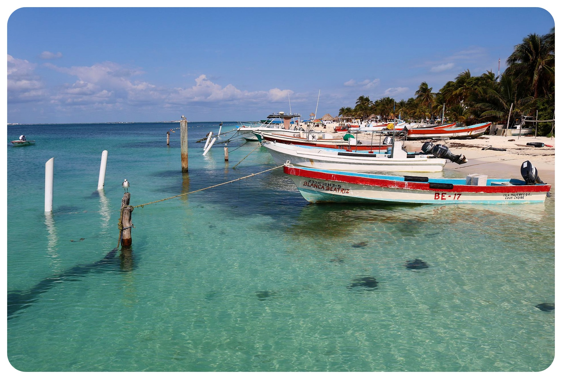 fishing boats isla mujeres