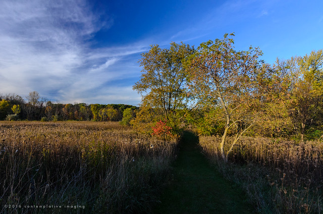 the warm colors of the prairie