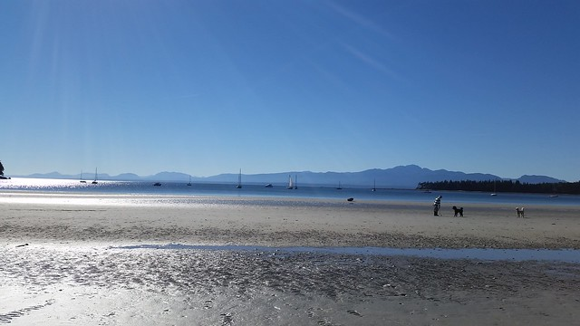 Tribune Bay Beach