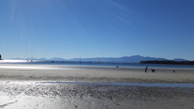 Tribune Bay Beach