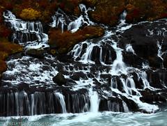 Hraunfossar Falls Iceland