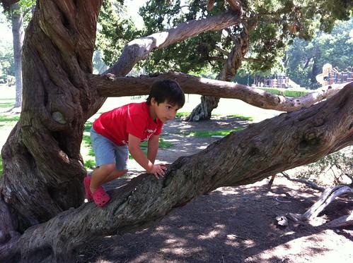 Finn climbs