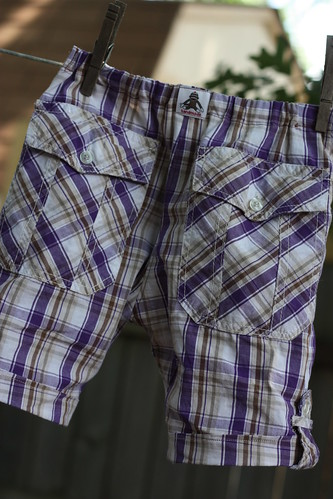 plaid shorts 029