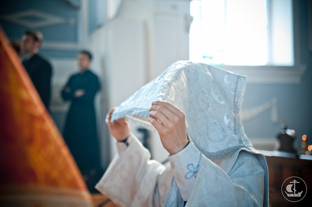 2 июня 2013, Неделя 5-я по Пасхе, о самаряныне