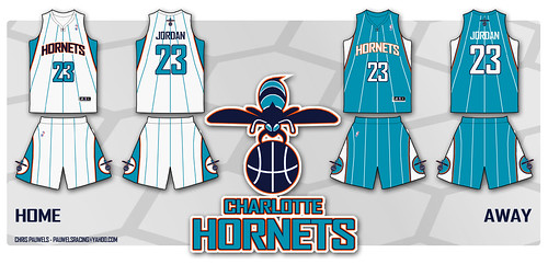 chris_pauwels_hornets.jpg