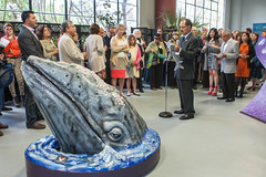 Inauguración Travesía: Journey of the Gray Whale.
