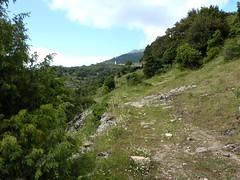 Remontée vers Capella : en vue de l'église d'Olmi