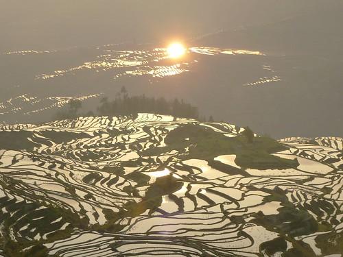 Yunnan13-Yuanyang 1-Duoyishu (94)
