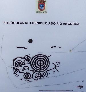 Indicador petrógligo río Angueira 1