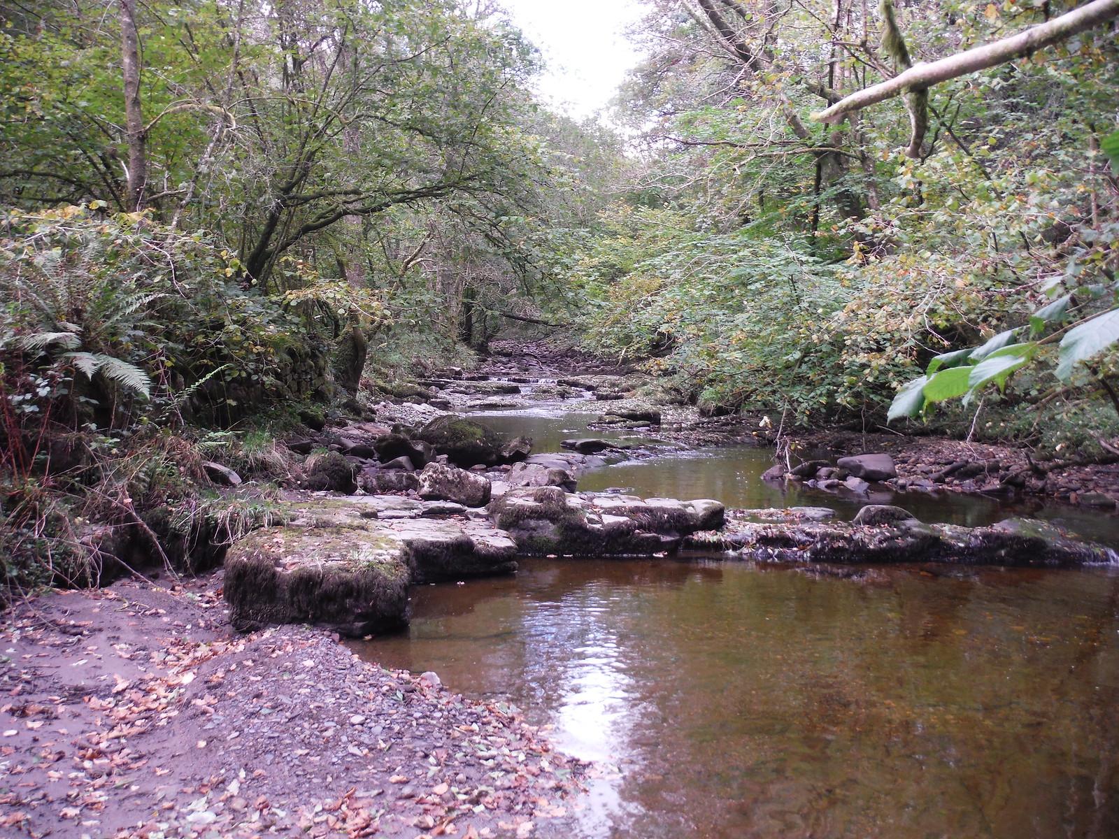 Sandstone Slabs in the Nant LLech SWC Walk 280 Henrhyd Falls - Sgwd Henrhyd (Craig y Nos Circular)