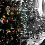 Hythe Christmas Tree Festival